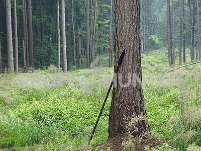Lovecké kopí Boar Spear Cold Steel - 2